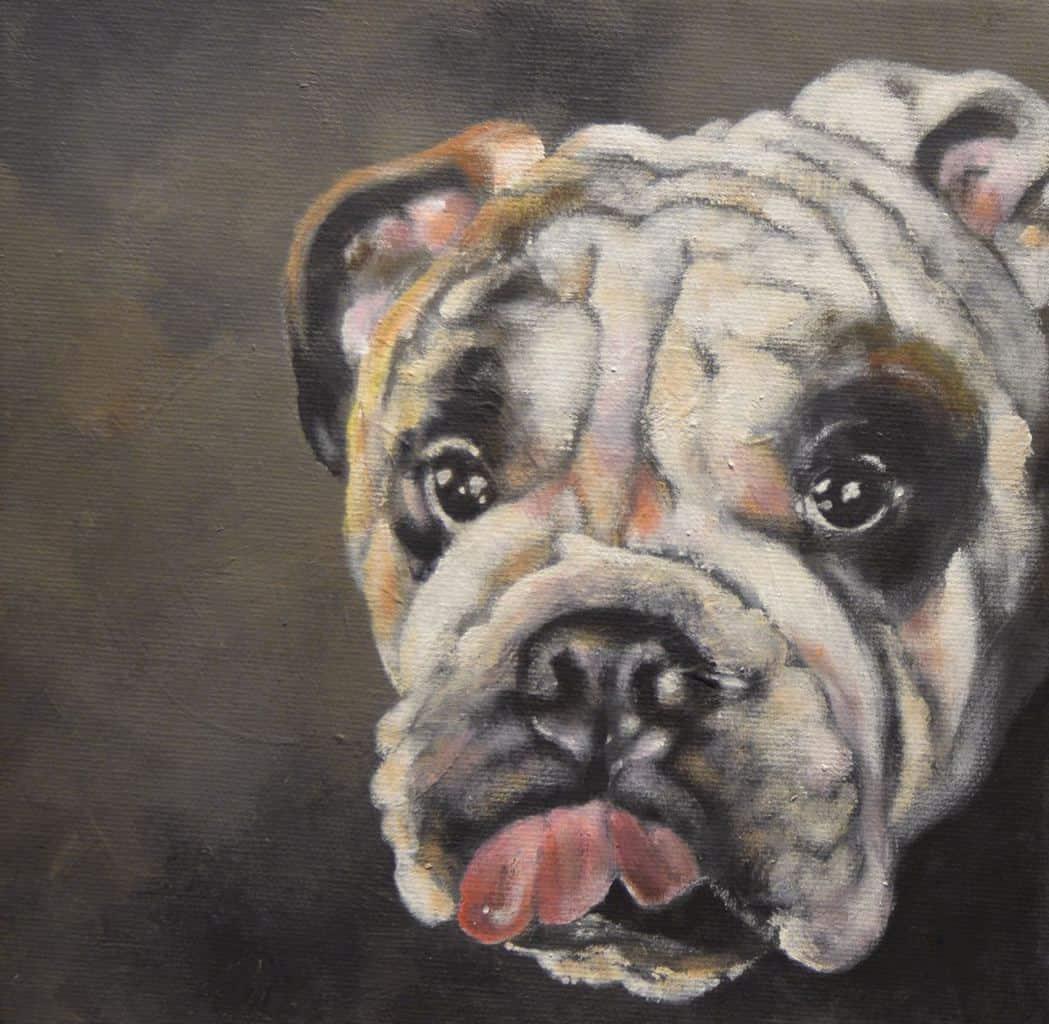 Pet artist dog painter sketch Surrey