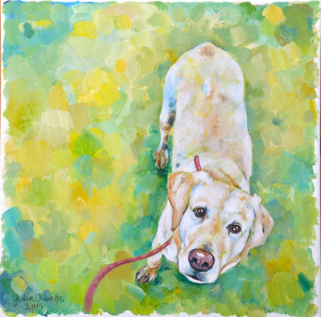 Pepper - Julia Osborne 2015, acrylics on canvas